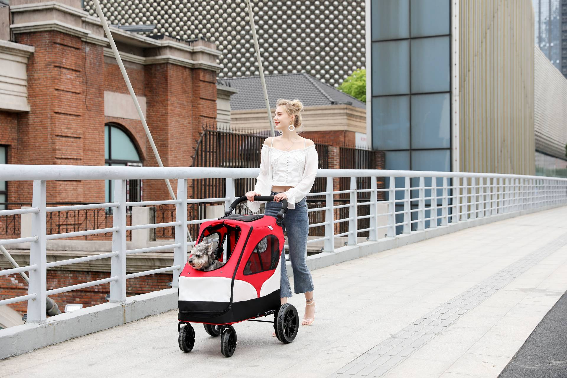 Rodite-4 wheels dog stroller hot selling pet trolley