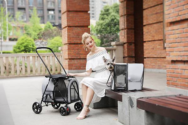 Twin stroller for dogs BL12-Rodite