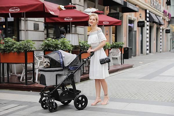 Luxury pet stroller pet carrier for dogs SP09-Rodite